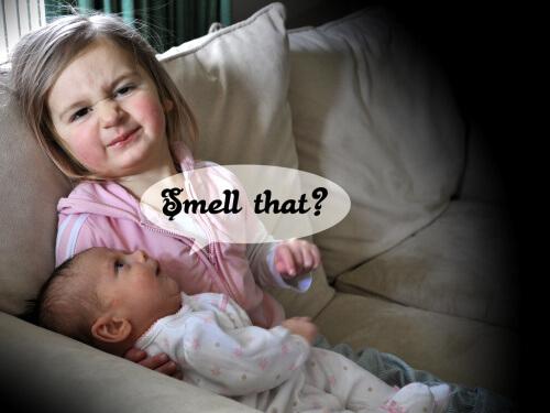 geuren en gedrag