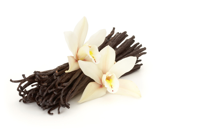 vanille in parfum