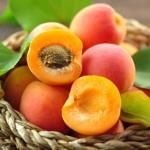 geurnoot nectarine